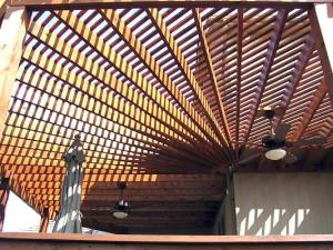 Unique Fan-Shaped Pergola